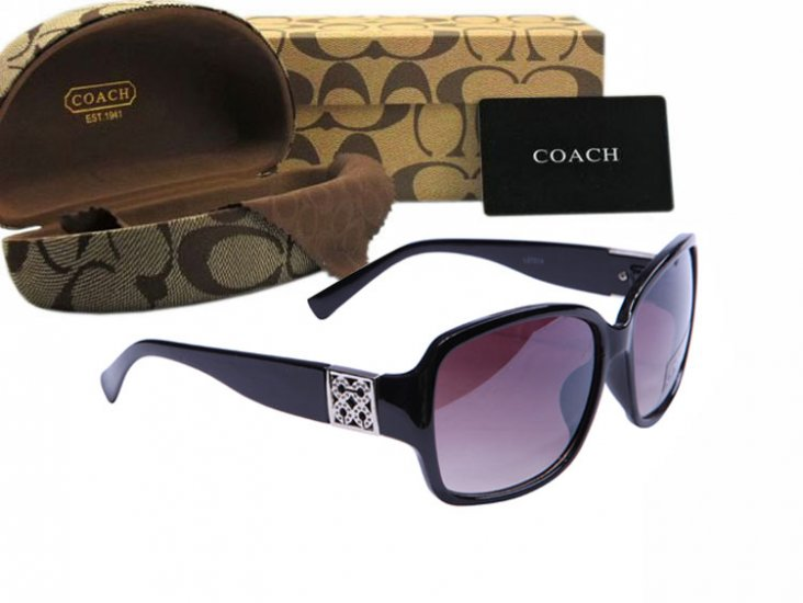 Coach Sunglasses 8005