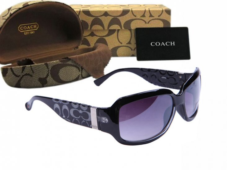 Coach Sunglasses 8024