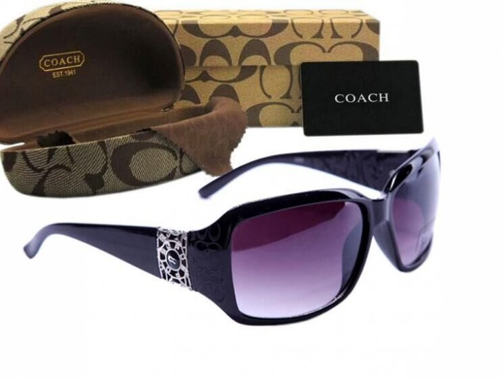 Coach Sunglasses 8004
