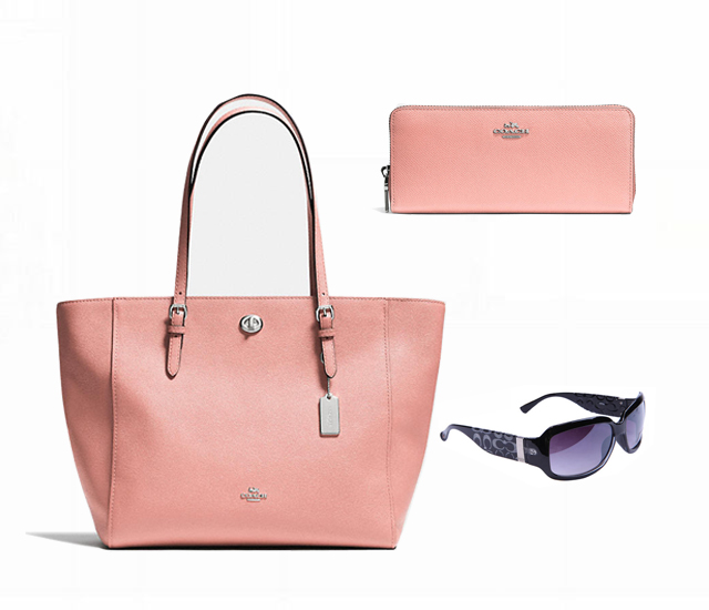 Coach Only $119 Value Spree 8823